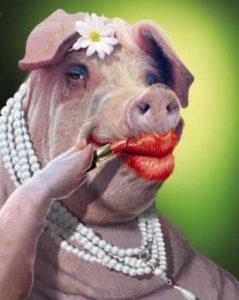 Свинья девушка